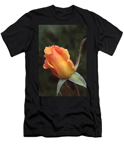 Early Morning Rosebud Men's T-Shirt (Athletic Fit)