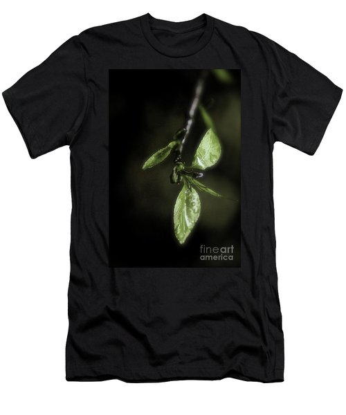 Early Spring Leaves Men's T-Shirt (Athletic Fit)
