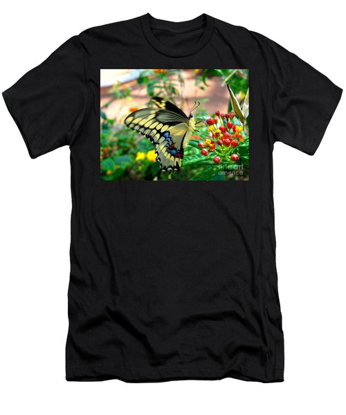 Eating On The Fly Men's T-Shirt (Athletic Fit)