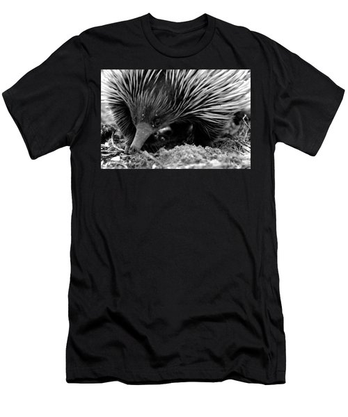 Echidna Men's T-Shirt (Slim Fit) by Miroslava Jurcik