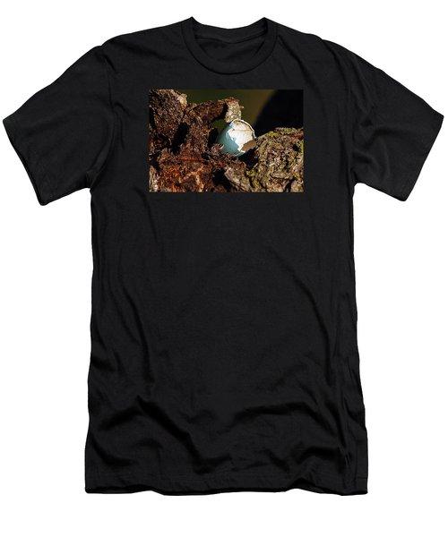 Eggs Of Nature 1 Men's T-Shirt (Athletic Fit)