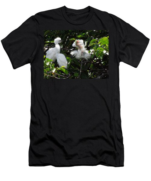 Egret Chicks Men's T-Shirt (Athletic Fit)