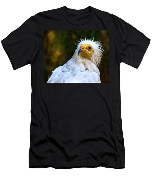 Egyptian Vulture Men's T-Shirt (Athletic Fit)