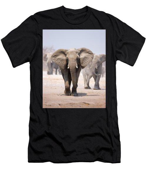 Elephant Bathing Men's T-Shirt (Athletic Fit)