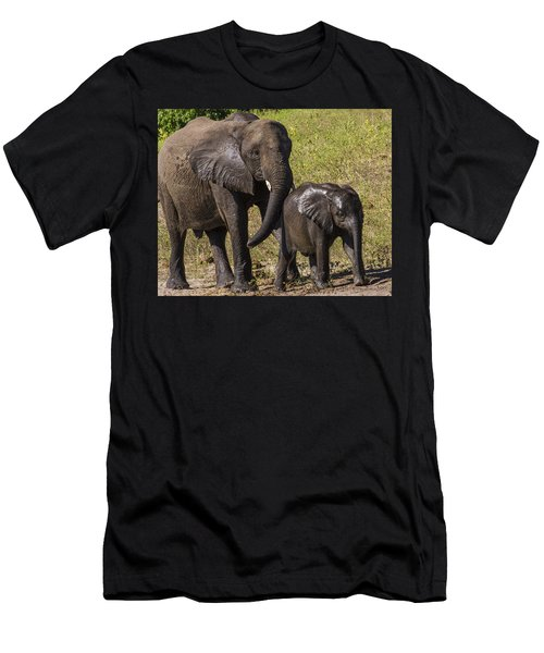 Elephant Mom And Baby Men's T-Shirt (Athletic Fit)