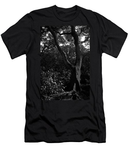 Men's T-Shirt (Slim Fit) featuring the photograph Elizabethan Gardens Tree In B And W by Greg Reed