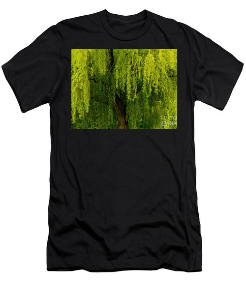 Enchanting Weeping Willow Tree  Men's T-Shirt (Slim Fit) by Carol F Austin