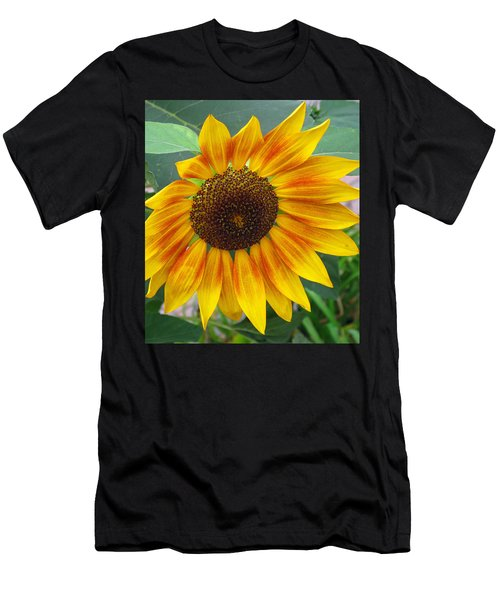 End Of Summer Sunflower Men's T-Shirt (Athletic Fit)