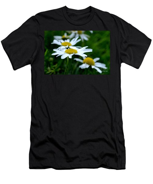 English Daisies Men's T-Shirt (Athletic Fit)