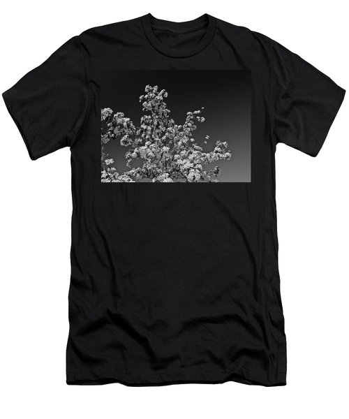 Evergreen Pear Bw Men's T-Shirt (Athletic Fit)