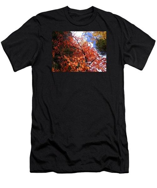 Fall Colors 6340 Men's T-Shirt (Slim Fit) by En-Chuen Soo