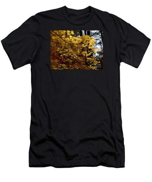 Fall Colors 6372 Men's T-Shirt (Athletic Fit)