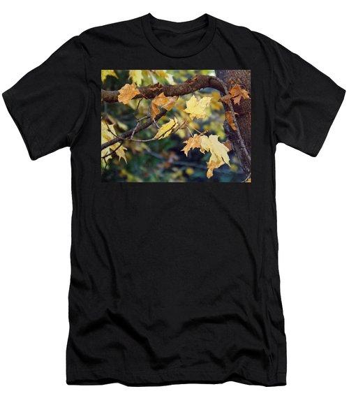 Fall Foilage Men's T-Shirt (Slim Fit) by Brenda Brown
