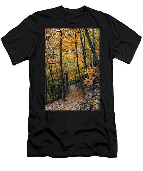 Fall Foliage Colors 03 Men's T-Shirt (Athletic Fit)