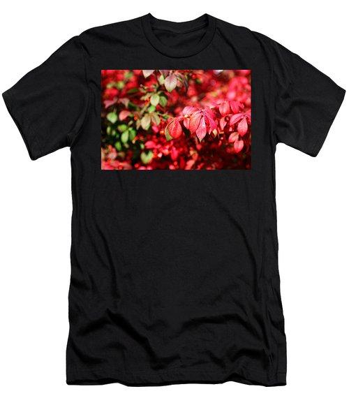 Fall Foliage Colors 10 Men's T-Shirt (Athletic Fit)