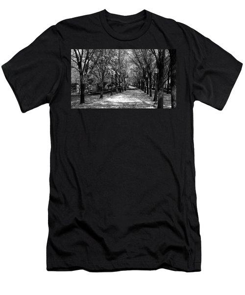 Fall Tree Promenade Landscape Men's T-Shirt (Athletic Fit)
