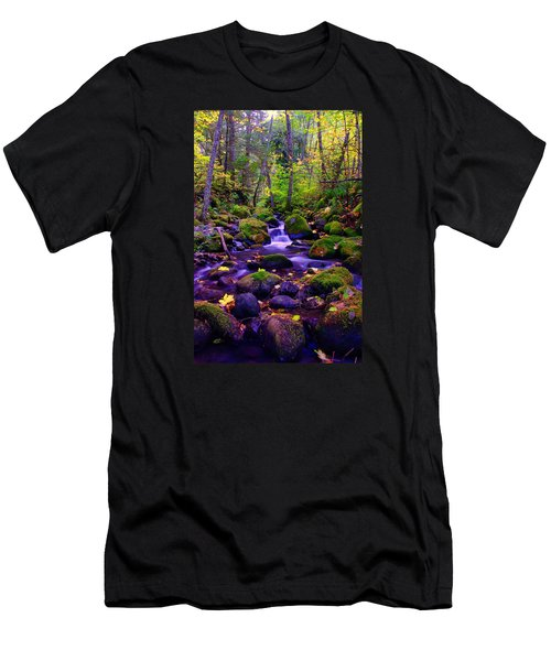 Fallen Leaves On The Rocks Men's T-Shirt (Athletic Fit)