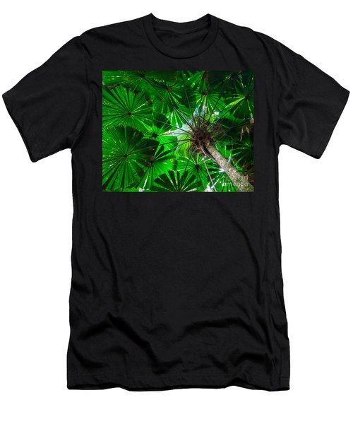 Fan Palm Tree Of The Rainforest Men's T-Shirt (Athletic Fit)