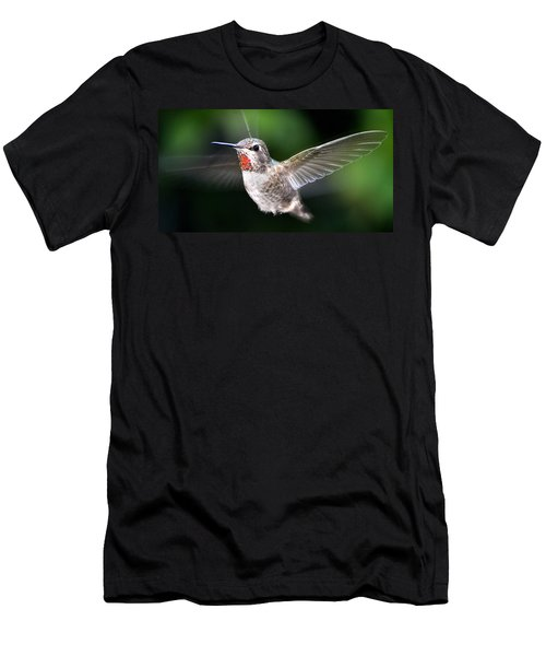 Men's T-Shirt (Slim Fit) featuring the photograph Female Caliope Hummingbird In Flight by Jay Milo