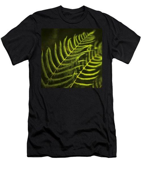 Fern Men's T-Shirt (Slim Fit) by Bradley R Youngberg