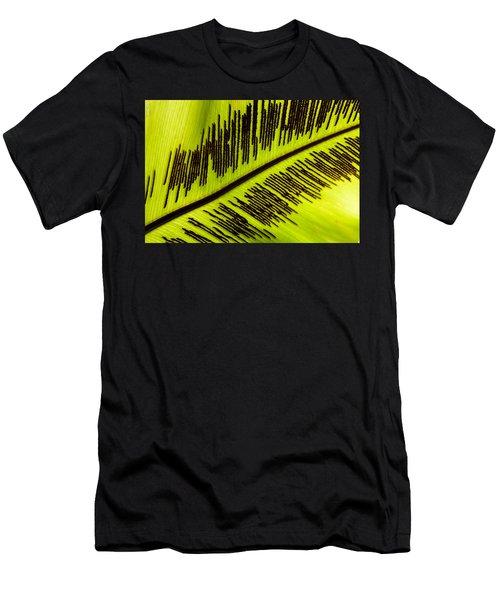 Fern Leaf Men's T-Shirt (Athletic Fit)