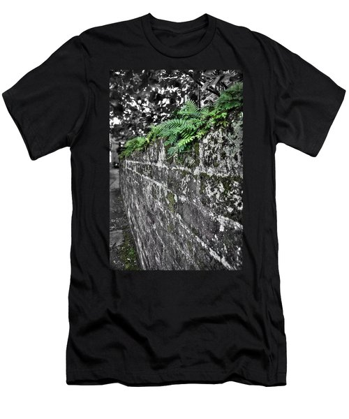 Ferns On Old Brick Wall Men's T-Shirt (Athletic Fit)