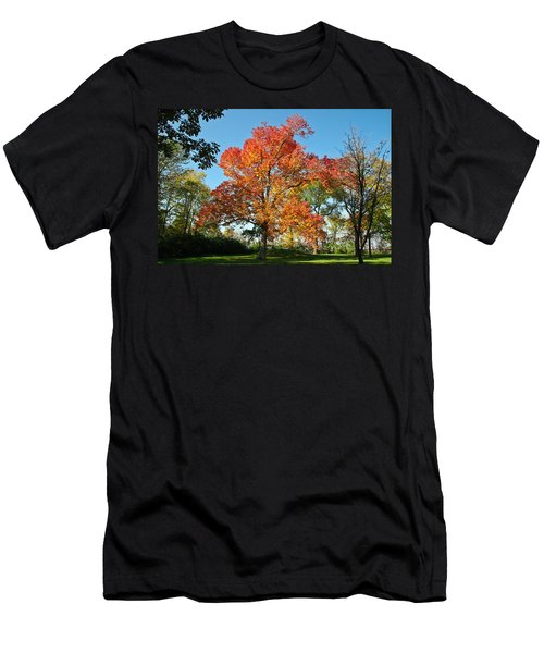 Fiery Fall Men's T-Shirt (Athletic Fit)