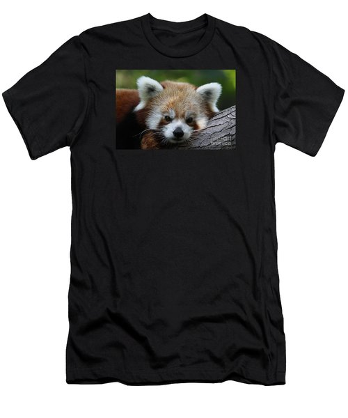 Men's T-Shirt (Slim Fit) featuring the photograph Fire Fox by Judy Whitton