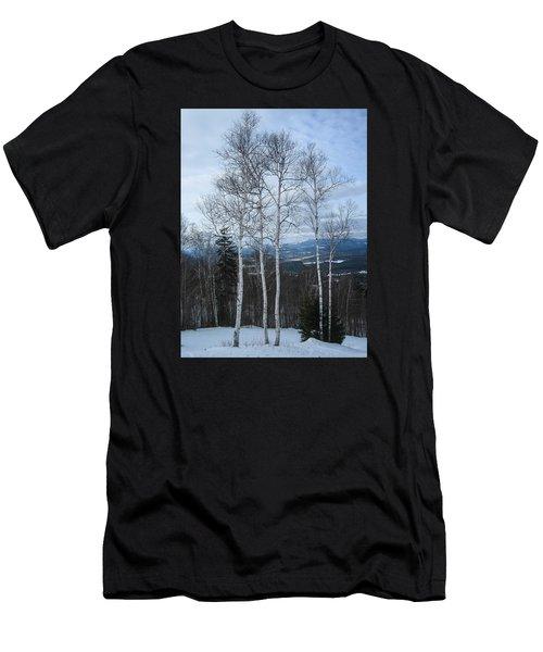 Five Birch Trees Men's T-Shirt (Athletic Fit)