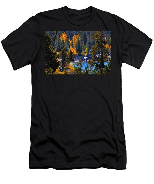 Flaming Aspens Men's T-Shirt (Athletic Fit)