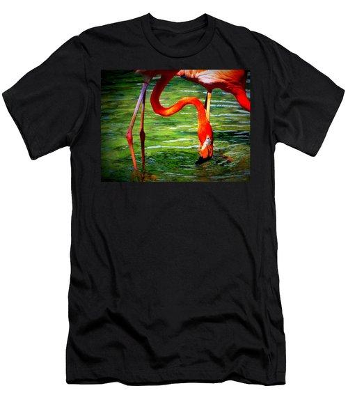 Flamingo Men's T-Shirt (Slim Fit) by David Mckinney