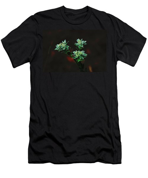 Floating Petals Men's T-Shirt (Athletic Fit)