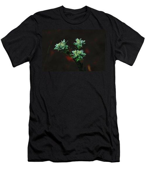 Floating Petals Men's T-Shirt (Athletic Fit)