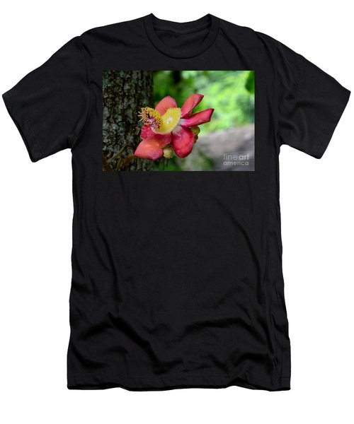 Flower Of Cannonball Tree Singapore Men's T-Shirt (Athletic Fit)