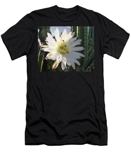 Men's T-Shirt (Slim Fit) featuring the photograph Flowering Cactus 5 by Mariusz Kula