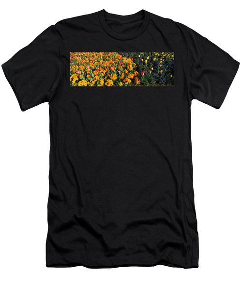 Flowers In Hyde Park, City Men's T-Shirt (Slim Fit) by Panoramic Images