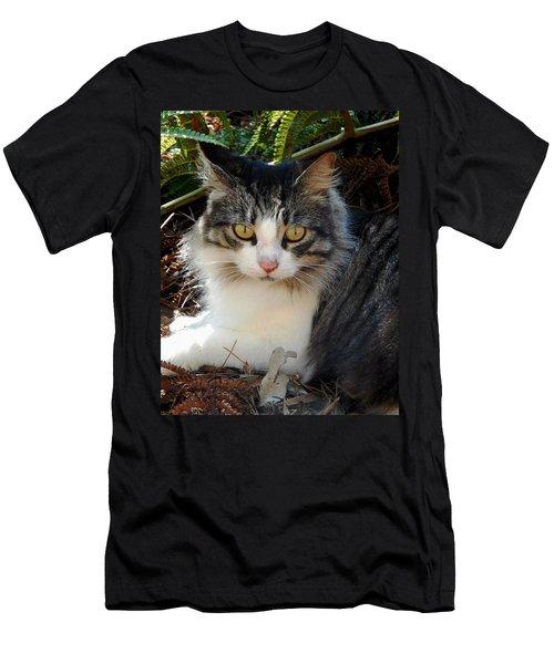 Fluffy Cat Men's T-Shirt (Slim Fit) by Pamela Walton