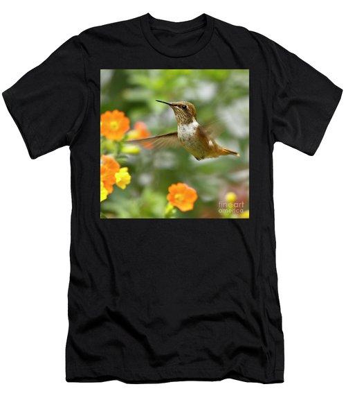 Flying Scintillant Hummingbird Men's T-Shirt (Athletic Fit)