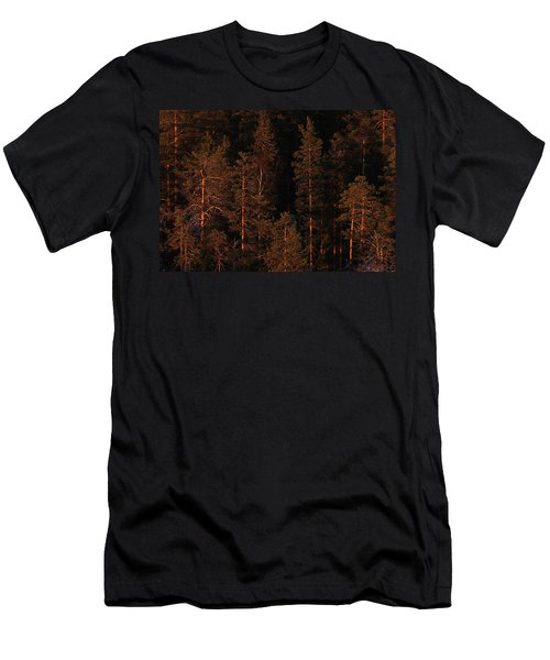 Forest Sunset, Russia Men's T-Shirt (Athletic Fit)