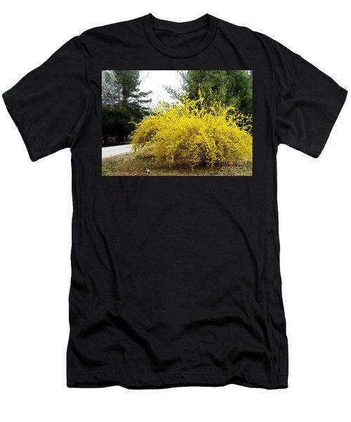 Forsythia Men's T-Shirt (Athletic Fit)