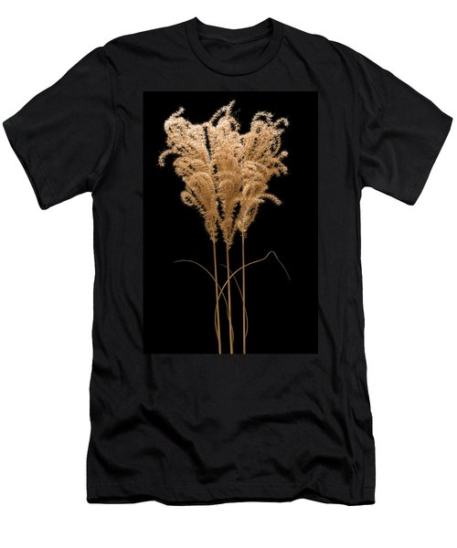 Fountain Grass Men's T-Shirt (Athletic Fit)