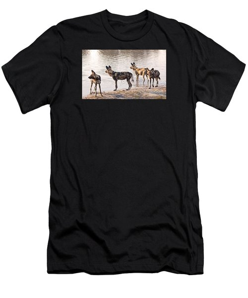 Four Alert African Wild Dogs Men's T-Shirt (Athletic Fit)