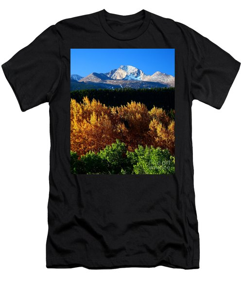 Four Seasons Men's T-Shirt (Slim Fit) by Steven Reed