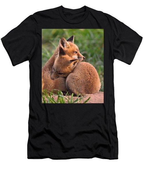 Fox Cubs Cuddle Men's T-Shirt (Athletic Fit)