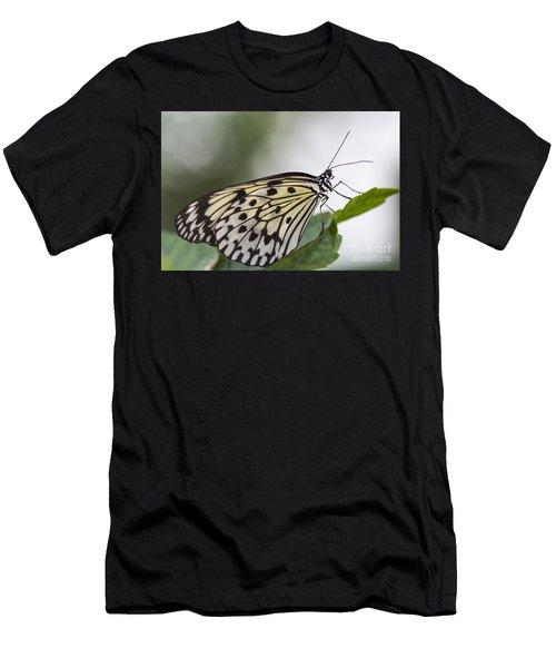 Fragile Beauty Men's T-Shirt (Athletic Fit)