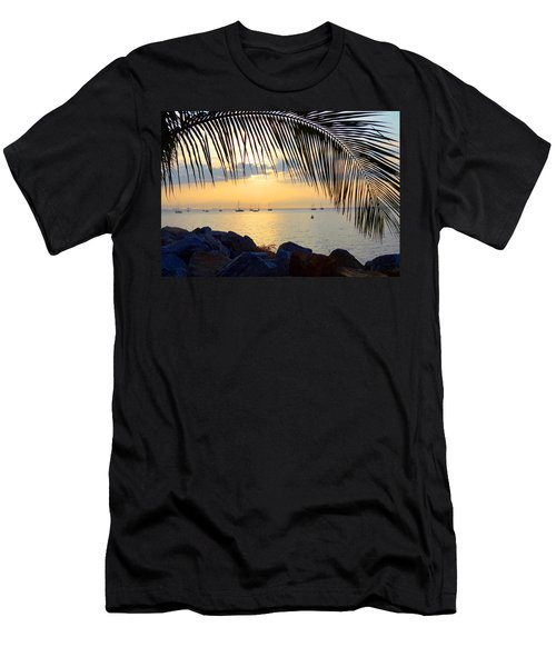 Framed By Fronds Men's T-Shirt (Athletic Fit)