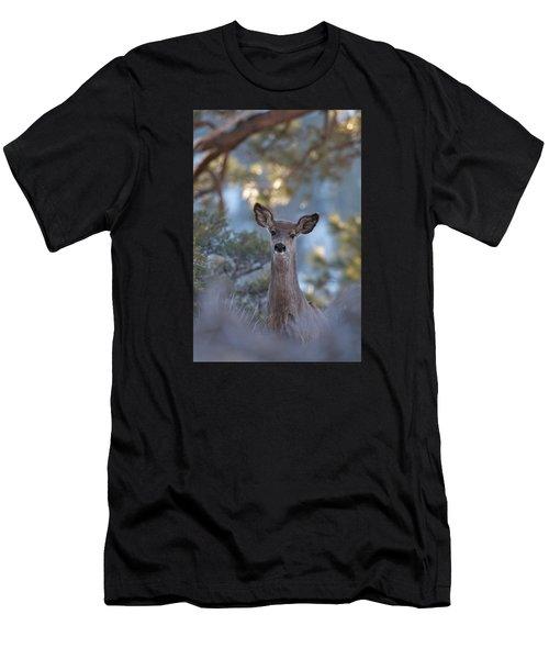 Framed Deer Head And Shoulders Men's T-Shirt (Athletic Fit)