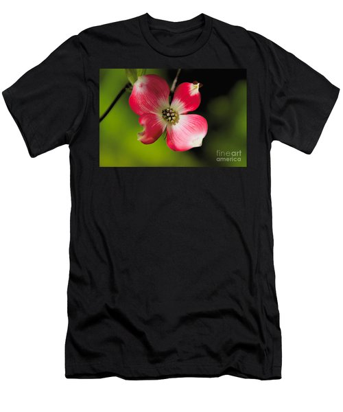 Fruit Tree Flower Men's T-Shirt (Athletic Fit)