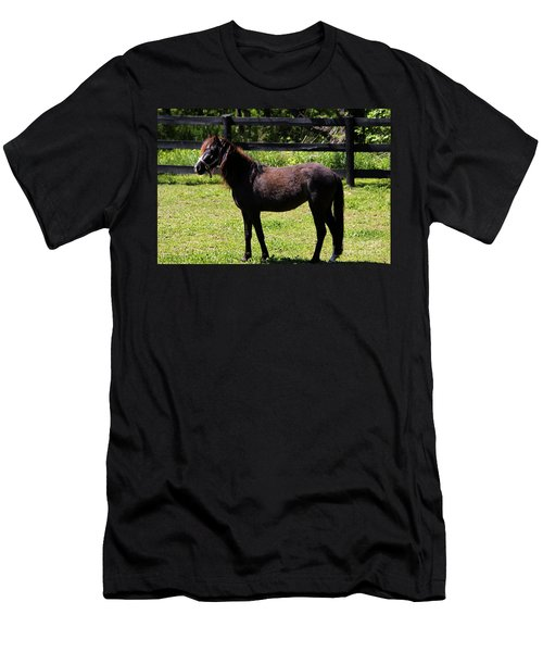 Furry Pony Men's T-Shirt (Athletic Fit)