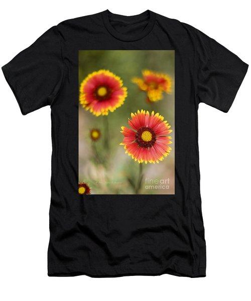 Gaillardia 'arizona Sun' Men's T-Shirt (Athletic Fit)